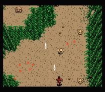 Firebird MSX 19