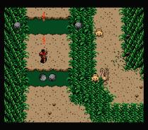 Firebird MSX 28