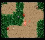 Firebird MSX 30