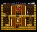 The Treasure of Usas MSX 30
