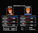 The Treasure of Usas MSX 39