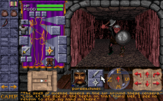dungeon hack pc 08