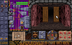 dungeon hack pc 09