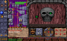 dungeon hack pc 17