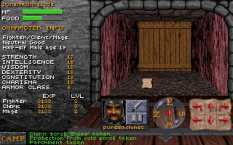 dungeon hack pc 35