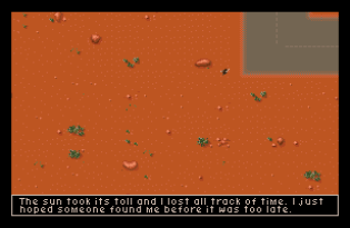 it came from the desert amiga 26
