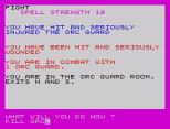 velnor's lair zx spectrum 38