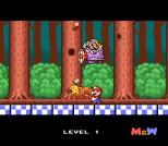 Mario and Wario SNES 04