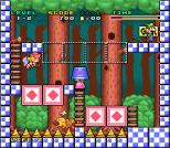 Mario and Wario SNES 06