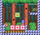Mario and Wario SNES 07
