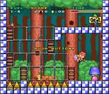 Mario and Wario SNES 08