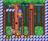 Mario and Wario SNES 14