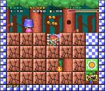 Mario and Wario SNES 15