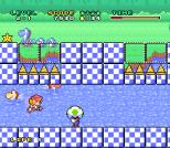 Mario and Wario SNES 19