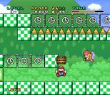 Mario and Wario SNES 36