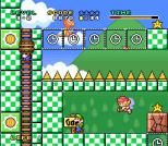 Mario and Wario SNES 38