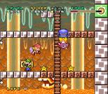 Mario and Wario SNES 74