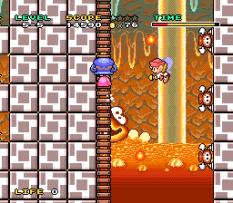 Mario and Wario SNES 76