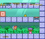 Mario and Wario SNES 79