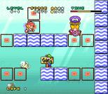 Mario and Wario SNES 81
