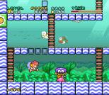 Mario and Wario SNES 83