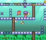 Mario and Wario SNES 84