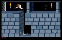 Prince of Persia Amiga 06