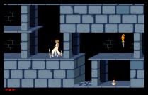Prince of Persia Amiga 17