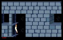 Prince of Persia Amiga 19