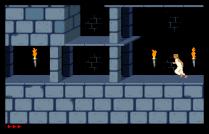 Prince of Persia Amiga 24