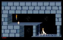 Prince of Persia Amiga 25