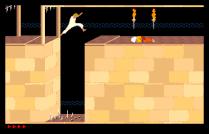 Prince of Persia Amiga 46