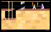 Prince of Persia Amiga 48