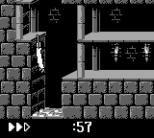 Prince of Persia GB 16