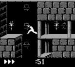 Prince of Persia GB 24