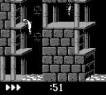 Prince of Persia GB 27