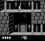 Prince of Persia GB 39