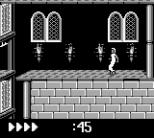 Prince of Persia GB 47