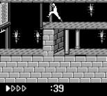 Prince of Persia GB 61