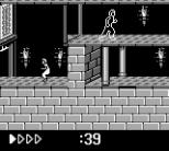 Prince of Persia GB 62