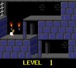Prince of Persia GBC 04