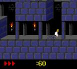 Prince of Persia GBC 05