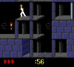 Prince of Persia GBC 08