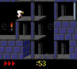 Prince of Persia GBC 13