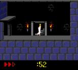 Prince of Persia GBC 18