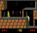 Prince of Persia GBC 27