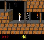 Prince of Persia GBC 28
