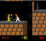 Prince of Persia GBC 29
