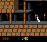 Prince of Persia GBC 30