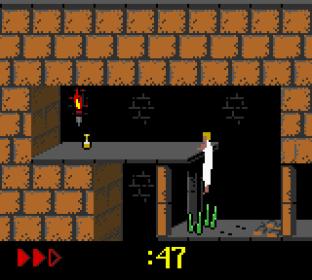 Prince of Persia GBC 31